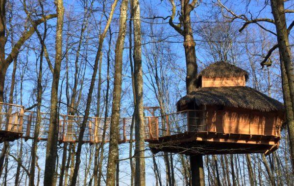 Tribu cabin